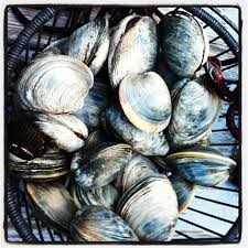 Cape Cod Clam Bake - crazy for clam chowder in cape cod eat your world blog