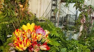 flowers san francisco macy s san francisco flower show visit macy s usa