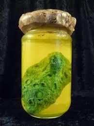 preserved tissue specimen tutorial u2013 gravedigger u0027s local 16