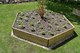 greena hexagonal raised bed ideal herb planter flower planter
