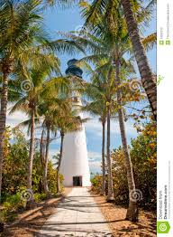 lighthouse and palm trees stock photos image 13352213