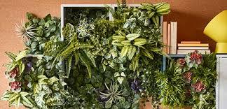 decor plants home home décor ikea