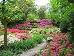 come creare un giardino fai da te come progettare un giardino ideare casa