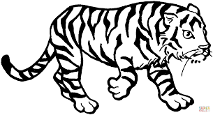 tiger 3 coloring page free printable coloring pages