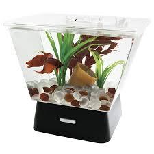 amazon com tetra 29050 led betta tank 1 gallon aquariums