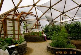 inside of a geodesic dome green house in bc nine month growing