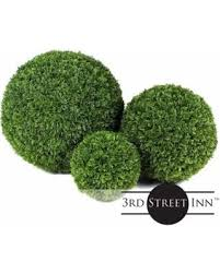 Topiary Plants Online - deal alert topiary ball assortment 15