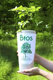 biodegradable urn bios biodegradable urn remembers your loved ones