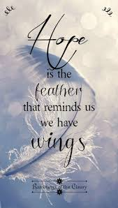 17 feather quote sayings quotations with phrases greetyhunt