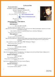 curriculum vitae templates pdf custom admission paper editing website dissertation order of