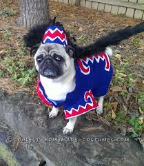 the most popular dog costumes popsugar pets coolest flying monkey dog costume halloween costume contest