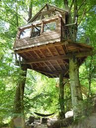 chambres dans les arbres les 25 meilleures idées de la catégorie maisons dans les arbres