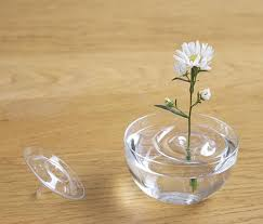 Small Vase Flower Arrangements Invisible Ripple Vases For Floating Flower Arrangements And Magic