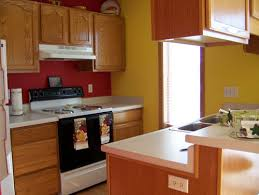 corridor kitchen design ideas house decorations