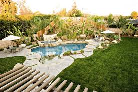 Natural Backyard Pools by Swimming Pool Pictures Gallery Landscaping Network