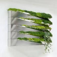 107 best herb garden u0026 pots images on pinterest plants