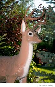 wildlife animals deer lawn ornament stock image i1862325 at