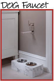 House Faucet Check It Out A Faucet Installed For The Pet Dish Genius A