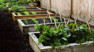 How To Make Planter Boxes by How To Make Simple Planter Box At Home Material Required