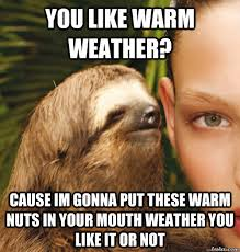 Hot Weather Meme - you like warm weather cause im gonna put these warm nuts in your