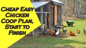 Backyard Chicken Coop Plans by Simple Chicken Coop Plans For 6 Chickens With Easy To Build