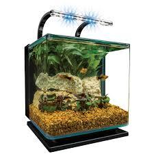 aquarium kits pet world and the aqua shoppe