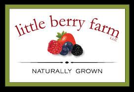 Little Berry Little Berry Farm