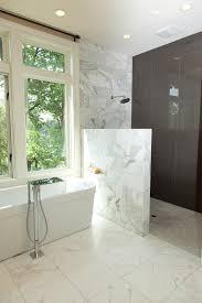 doorless shower design bathroom contemporary with sconce