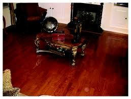 Professional Laminate Floor Cleaners Hardwood Floor Cleaning Charlotte Nc Cleaner Carpet Concepts