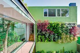 Vertical Wall Garden Ideas The And Sometimes Edible Living Wall