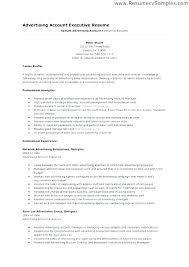 executive resume pdf sales director resume imcbet info