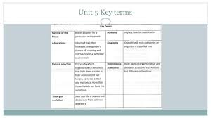 study guide answers life science leoce review nos key terms