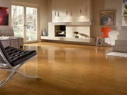 Flooring Options For Living Room Epic Flooring Options For Living Room L32 On Home