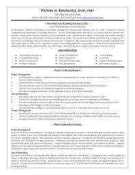Resume Manager Sample Business Analystproduct Development Manager Resume Samples