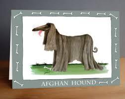 afghan hound collars uk afghan hound dog etsy