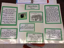 4th grade book report sample book report examples 4th grade what i wish everyone knew about book report examples 4th grade