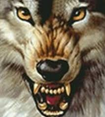 2017 ferocious wolf wholesale diy diamond painting home decor