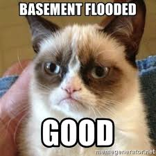Flooded Basement Meme - basement flooded good grumpy cat meme generator