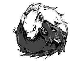 yang wolf
