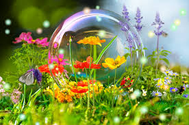 wild flowers in wild meadows flowers wild flowers butterfly colorful forest meadow bubble