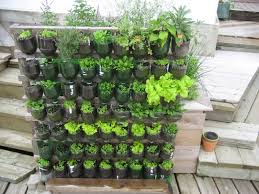 indoor vertical vegetable garden kit home outdoor decoration