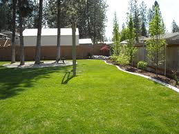 simple backyard landscape design stagger best 25 cheap landscaping