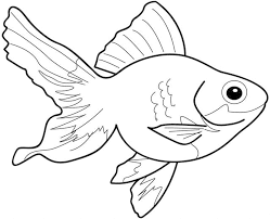 new goldfish coloring page 20 608