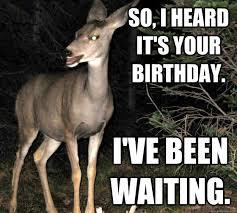 Owl Birthday Meme - so i heard it s your birthday i ve been waiting vaguely