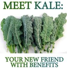 kale for thanksgiving a vegetarian s spandy andy