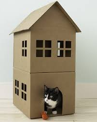 cat house plans indoor courageous36xus
