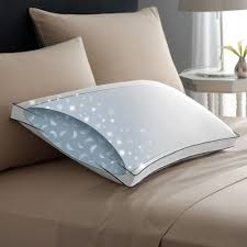 armed bed pillows best pillows double down around medium pacific coast bedding