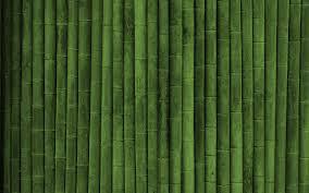 bamboo wall wallpaper 6080