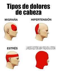 Memes Musica - dopl3r com memes musica de nissin