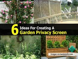 Garden Privacy Screen Ideas Garden Privacy Screen Ideas Home Outdoor Decoration